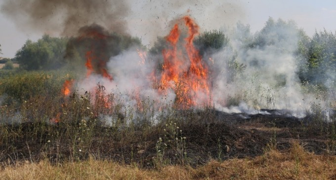 Karma! Un bărbat a dat foc vegetației, iar focul i-a distrus complet Matizul – Mediu
