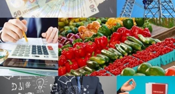 """Business report: Vasilescu, BNR: Dinspre FMI, nicio speranţă. Tarifele maxime pentru ridicarea mașinilor parcate neregulamentar. 10 lecții de viață și muncă din 10 ani pe cont propriu. Între """"casa visurilor"""" și """"cămașă de forță"""" – Finante & Banci"""