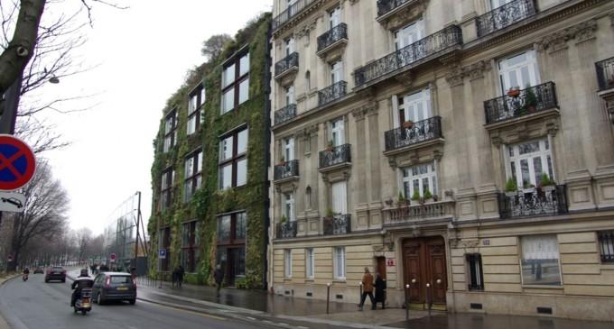 Primăria Sectorului 4 vrea să acceseze fonduri prin Green Deal pentru a amenaja grădini verticale pe fațadele blocurilor și pe clădiri publice – Administratie Locala