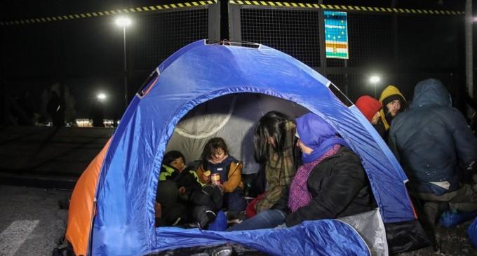 Acțiune de aploare în Timiș: Peste 100 de migranți împiedicați să intre ilegal în România – Esential