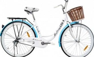 Ce bicicletă electrică să cumperi