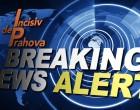 o femeie (?), sefa de grup PMP in Consiliul Judetean Prahova, Presedinte interimar PMP Ploiesti si Presedinte al Comisiei Naționale de Arbitraj si Integritate a PMP/Uneltele Catalinei Bozianu/ Inregistrari audio – Ziarul Incisiv de Prahova