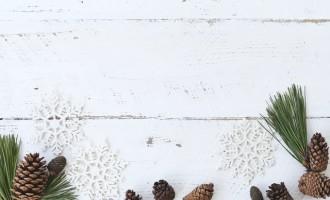 Idei usoare si simple pentru a decora cel mai original brad de Craciun
